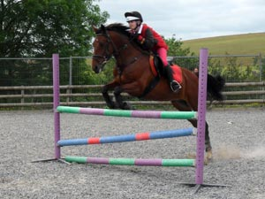 Confidence building is what we do Best at Sillaton Farm Stables