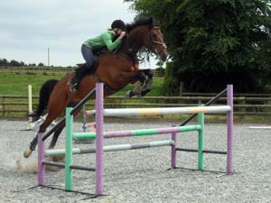 Sky is the limit at Sillaton Farm Stables