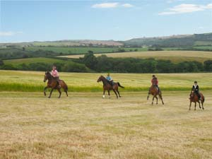 Up the Gallops at Sillaton Farm Stables