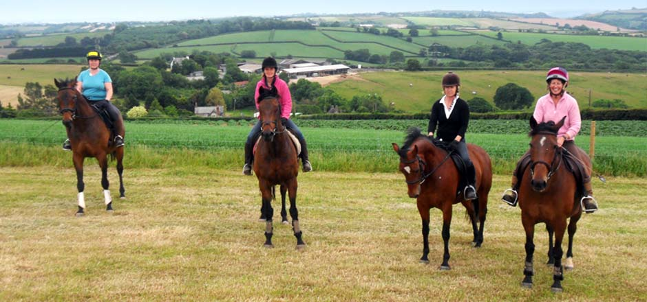 Pausing on the gallops at Sillaton Farm Stables